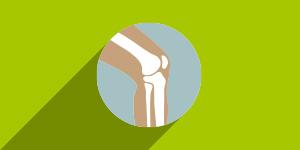 Kosti zglobovi i mišići