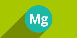 Magnezijum