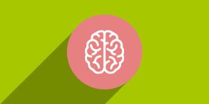 Mozak i kognitivna funkcija