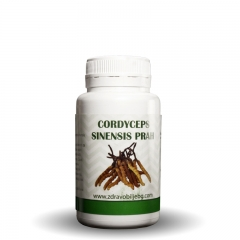 Cordyceps Sinensis - photo ambalaze
